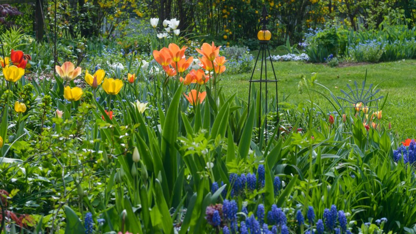 Mars au jardin : quels travaux réaliser ?