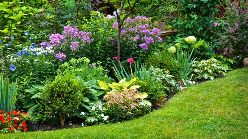 4 produits naturels pour renforcer ses plantes