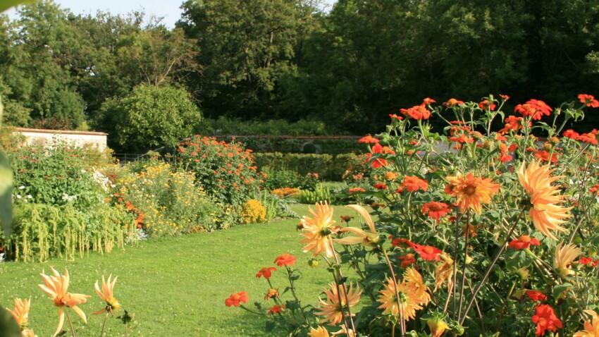 Que faire au jardin en septembre ?