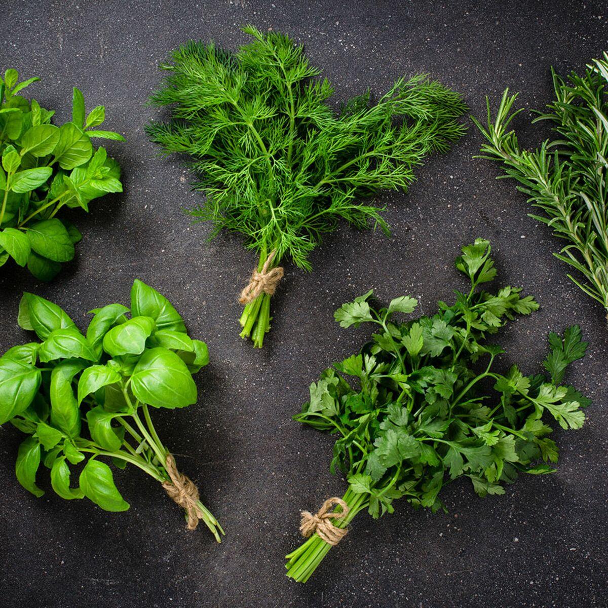 Top 5 De Nos Herbes Aromatiques Preferees Leurs Usages Cuisine
