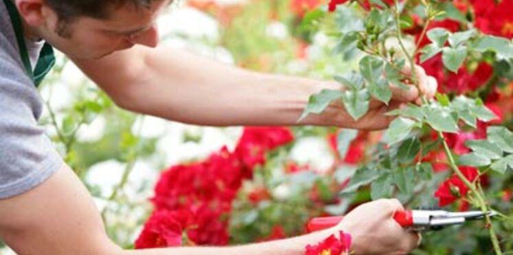 Ateliers de jardinage gratuits : on s'inscrit