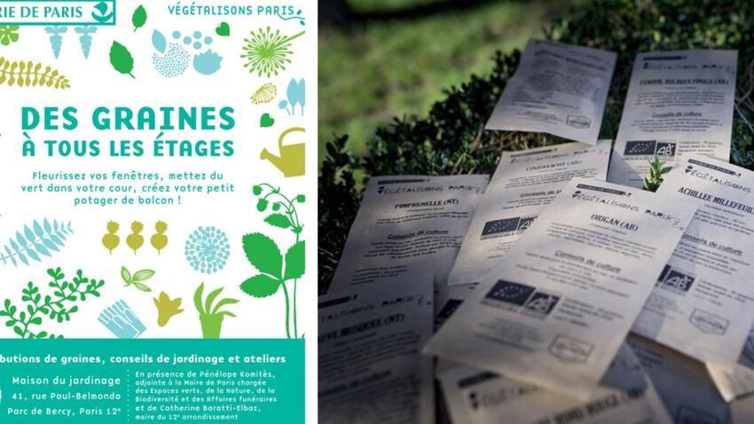 Bon plan : des graines et des plantes distribuées par la Mairie de Paris