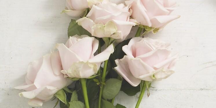 Les roses : le cadeau préféré des Français pour la Fête des mères