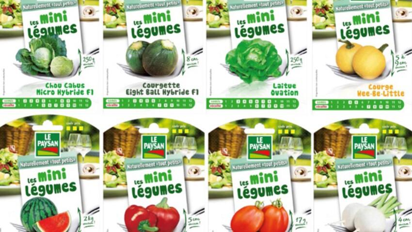 Des mini légumes dans votre potager