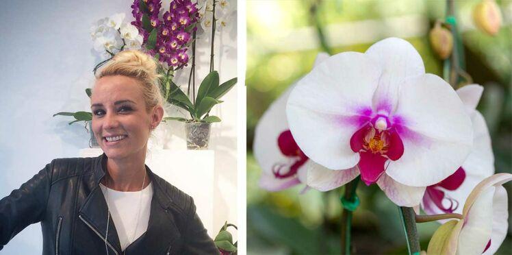 Elodie Gossuin : « L'orchidée est la Miss Univers des plantes »