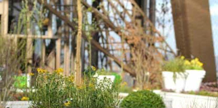 La Tour Eiffel accueille un jardin observatoire pour le printemps
