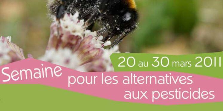 La France apprend à vivre sans pesticides