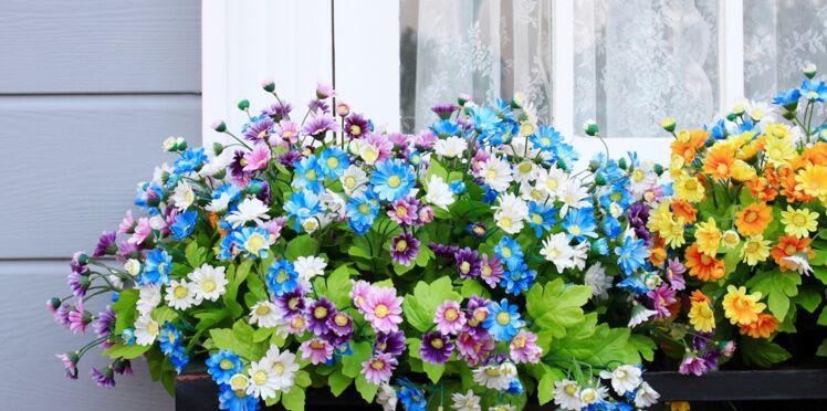Le nouveau site de conseils pour jardiner en ville