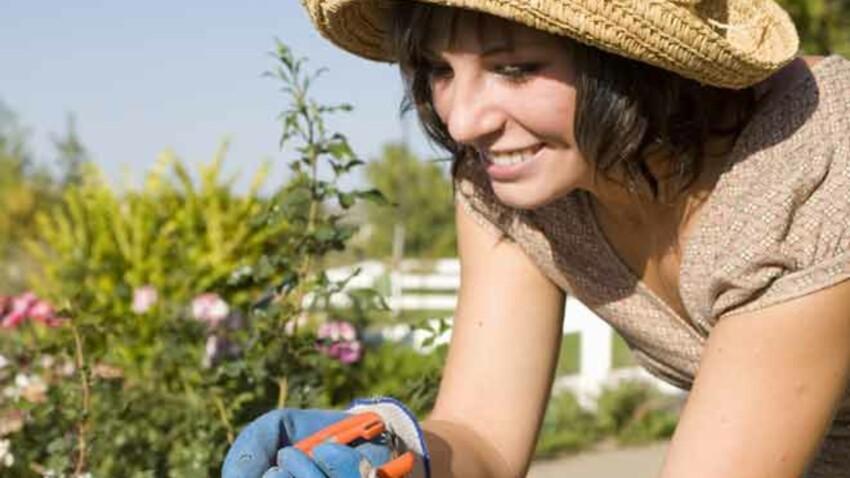 Les Français ont plus acheté de végétaux d'extérieur que d'intérieur