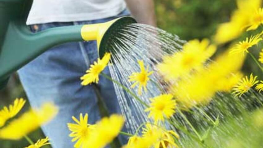 Les Franciliens invités à planter des fleurs