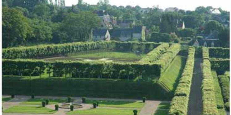 """Les Rendez-vous aux jardins 2008 sous le thème du """"Voyage des plantes"""""""