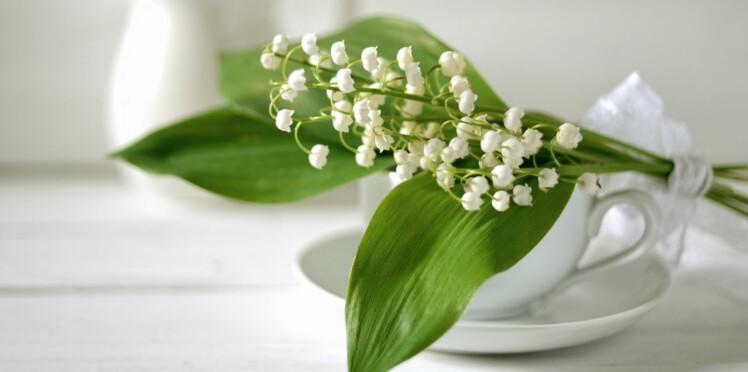 Le muguet : une plante aussi jolie que toxique