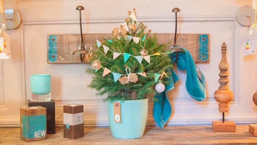 MyLittleSapin.fr : des arbres livrés et déjà décorés pour Noël