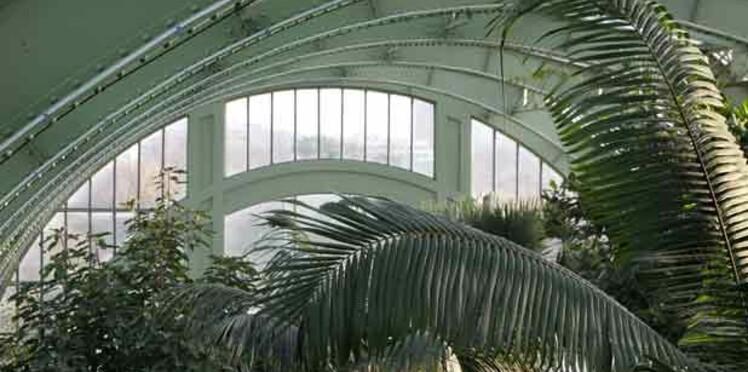 Noël : offrez un banc du Jardin des Plantes de Paris