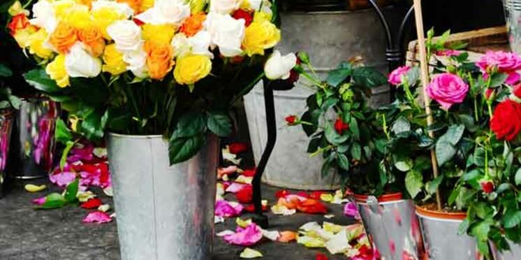 Un tiers des végétaux d'intérieur dédiés à la Saint-Valentin