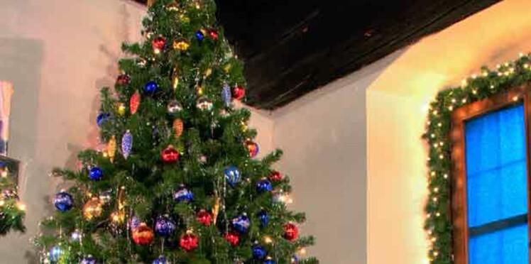 Des sapins de Noël en vente privée le 26 novembre