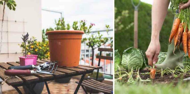 Ville / campagne : qui sont les meilleurs jardiniers ?