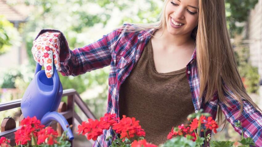 5 astuces pour protéger de la chaleur ses plantes d'intérieur ou au balcon