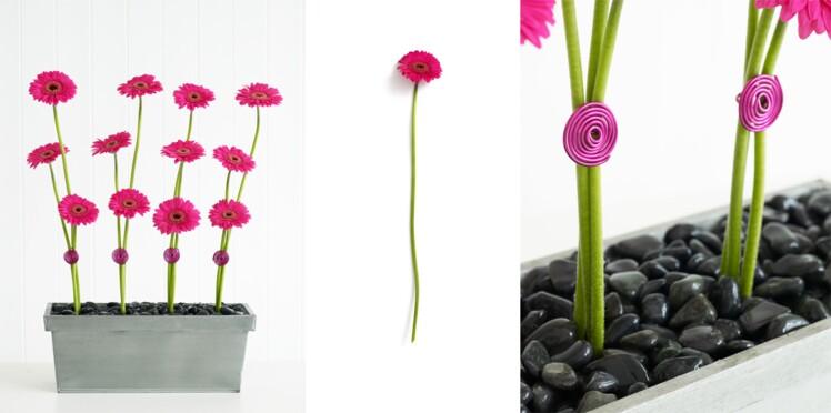 Art floral : comment créer des lignes de Gerbéras