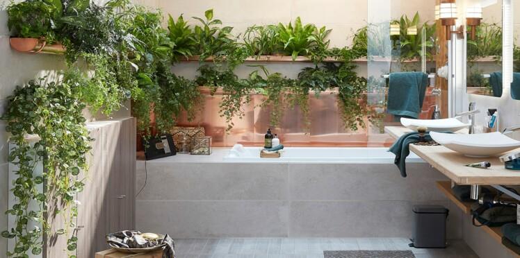 quelles plantes choisir pour ma salle de bain femme actuelle le mag. Black Bedroom Furniture Sets. Home Design Ideas