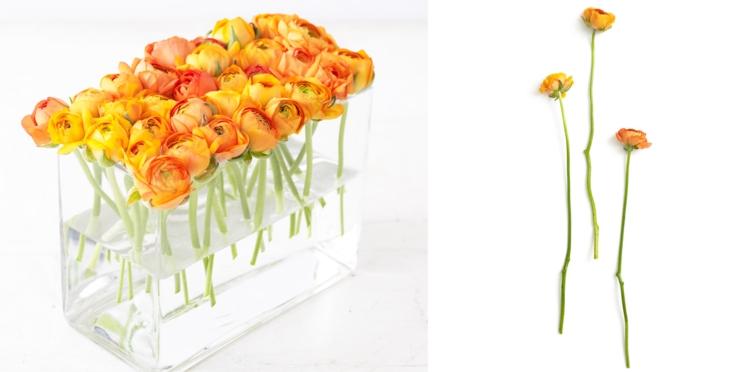 Composition florale : comment faire flotter des renoncules