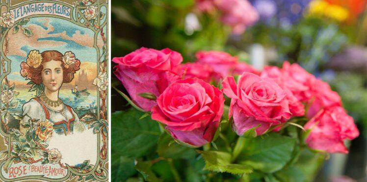 Langage des fleurs : symbole et histoire de la Rose
