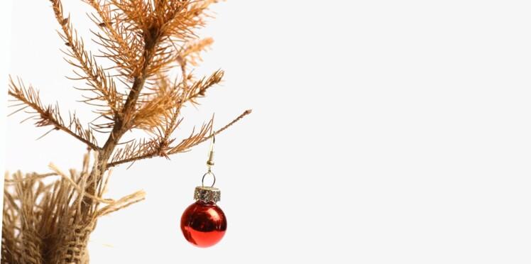 Sapin de Noël : comment s'en débarrasser après les fêtes