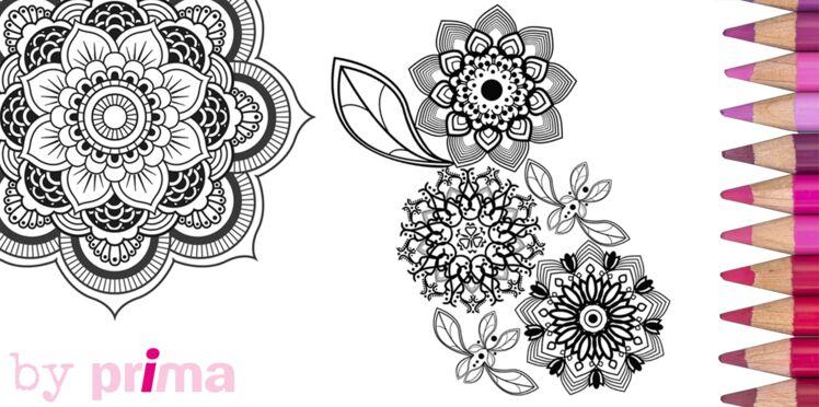 Mandala et coloriage fleur à imprimer
