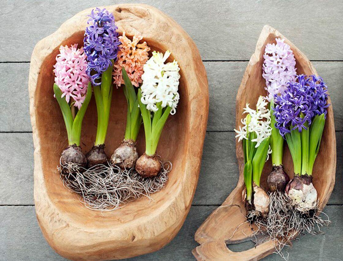 Vous pouvez même les placer dans des pots originaux à réaliser soi-même ou  créer une maisonnette en cuivre et en carton. a0b8a8b2453