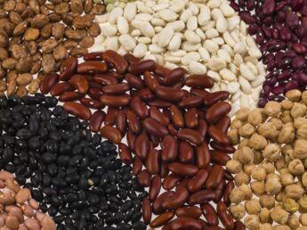 Les protéines végétales, c'est bon pour notre ligne !
