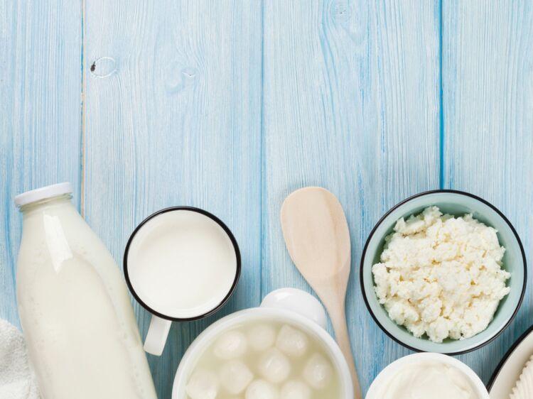 Yaourt, fromage, laitages    bons pour faire un régime