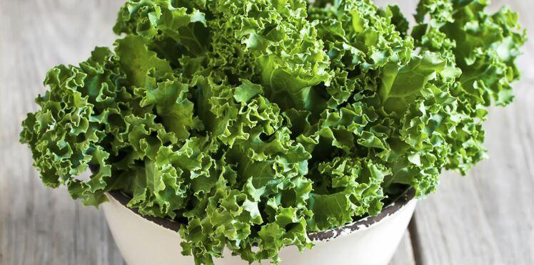Le Kale, le petit chou qui détoxe !