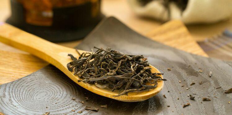 Le thé noir aiderait à perdre du poids