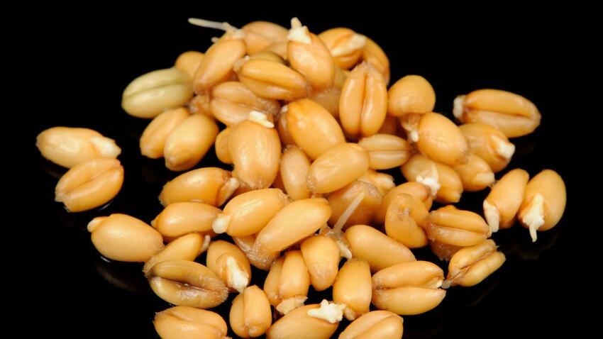 3 façons de cuisiner les germes de blé sans peser sur la balance