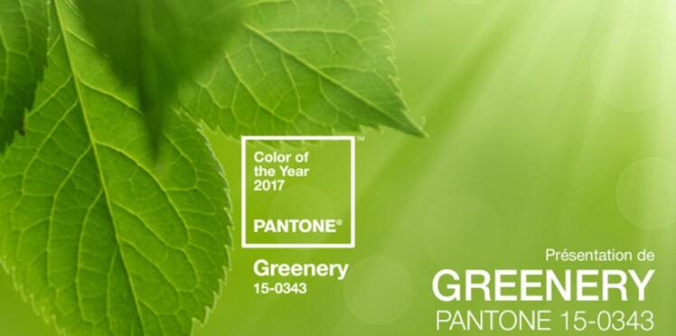 Et la couleur de l'année 2017 est... Vert Greenery !