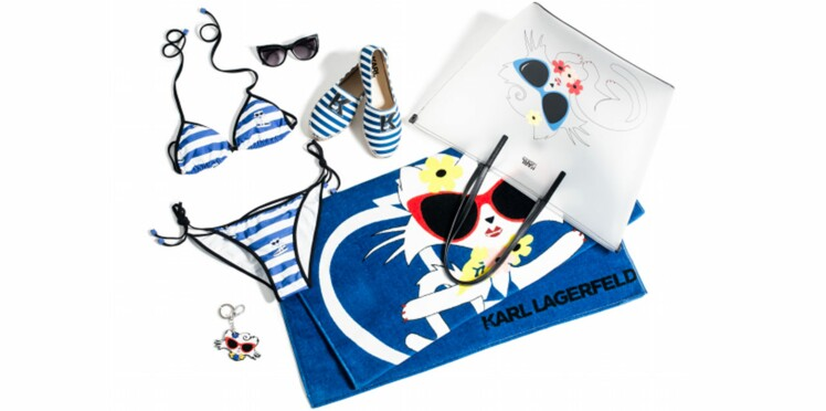 Karl Lagerfeld emmène Choupette à la plage