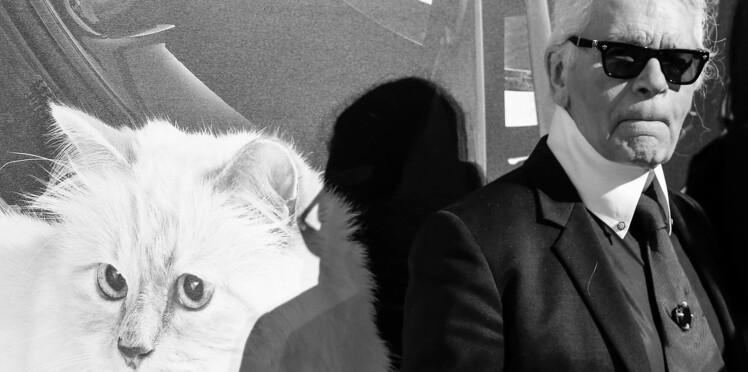 Fly with Karl : une nouvelle collection capsule en l'honneur de Choupette