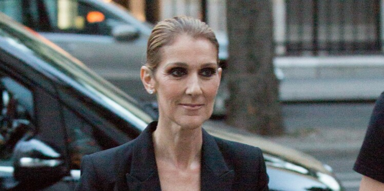 Photo - Céline Dion ultra sexy en mini-robe et cuissardes