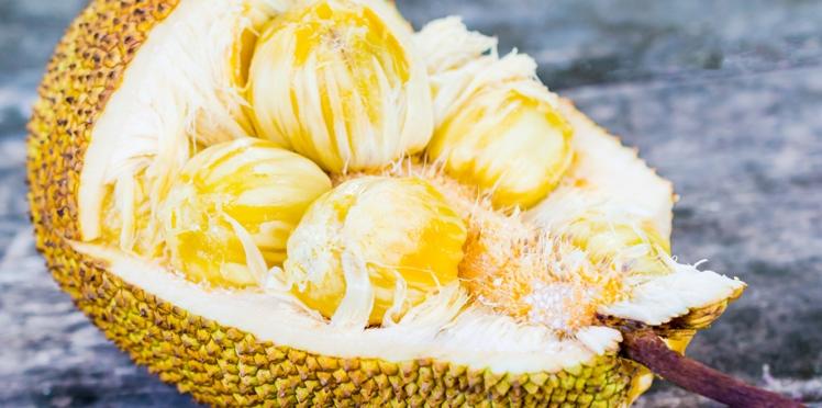 Le fruit du jacquier, shot d'énergie protecteur du système immunitaire