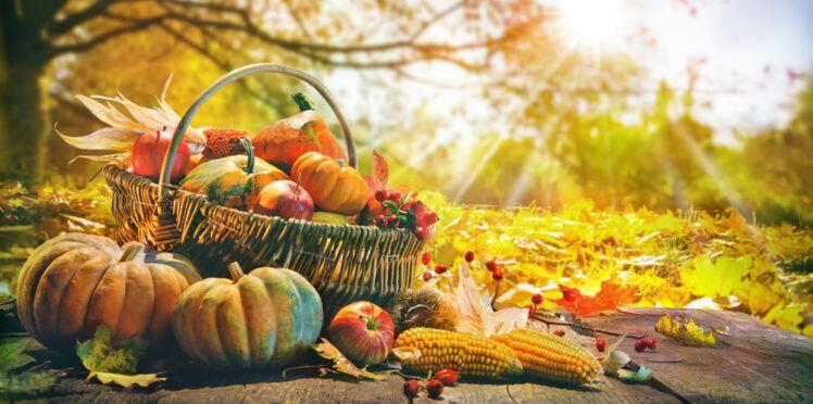 Immunité : les aliments dopants de l'automne
