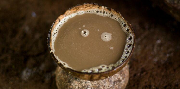 Kava : la boisson anti-stress qui fait un carton à New-York