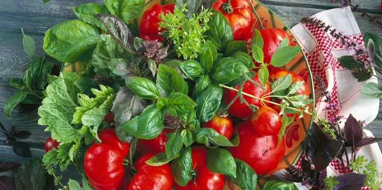 Salade tomates basilic : la recette santé pour cet été !