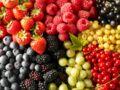 Quelle alimentation contre la maladie d'Alzheimer ?