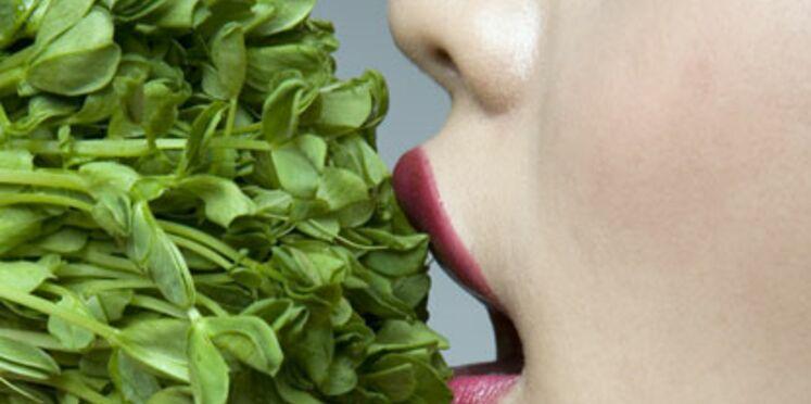 Végétarisme et équilibre alimentaire