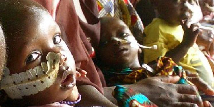 Antenna combat la malnutrition infantile