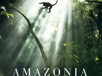 """Ces médicaments qui """"poussent""""  en Amazonie…"""