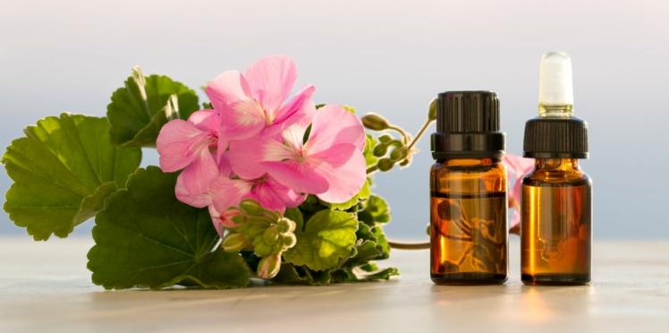 Aromathérapie : les vertus de l'huile essentielle de géranium