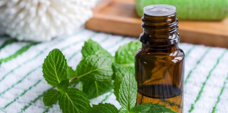 10 huiles essentielles à avoir toujours chez soi