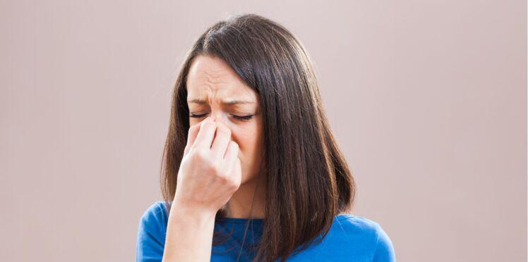 L'huile essentielle d'eucalyptus radié, contre le rhume et la sinusite