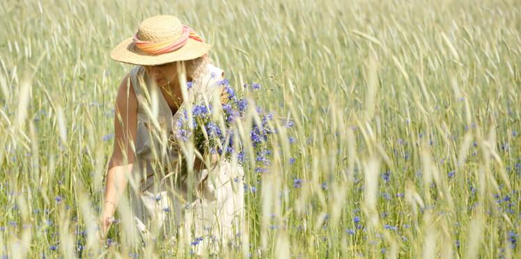 Phytothérapie : les plantes à cueillir pendant l'été